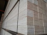 多层板生产厂家 出口木方;