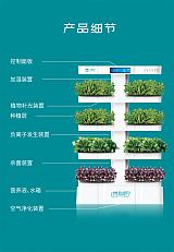 蔬菜种植机加湿空气净化空气释放负氧离子;