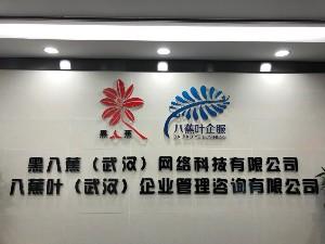 八蕉葉(武漢)企業管理谘詢玖玖資源站