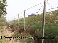 防护网 监狱防护网 边防哨所防护网
