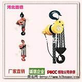 大罐群吊電動葫蘆/大罐環鏈電動葫蘆/路德群吊電;