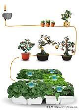 自動澆灌器;