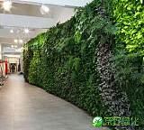 植物墙,仿真植物墙,真植物墙,垂直绿化,立体绿