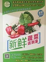 蔬菜批发,配送;