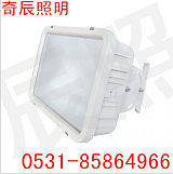 高光效多功能泛光灯 QC-F007