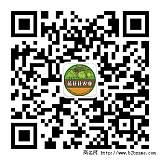 云海天骄蓝莓园5月下旬开摘了!!;
