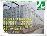 玻璃温室建设-智能温室建设-寿光市万禾农业;