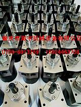 供应耐磨油漆静电齿轮泵