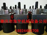 供应6CC专用喷漆齿轮泵