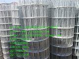 售圈玉米網 圈棒子網 圈苞米網 玉米圍網 棒子;