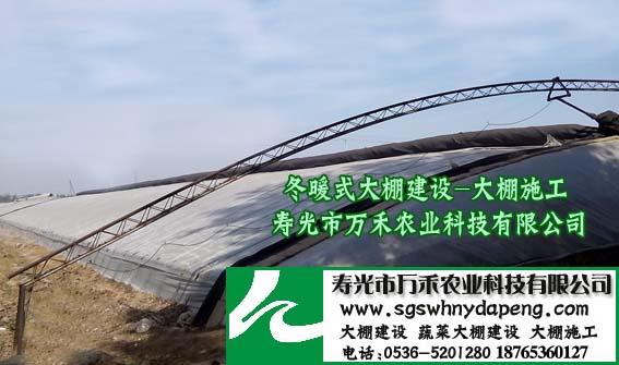 冬暖式大棚-立柱冬暖式大棚-寿光市万禾农业
