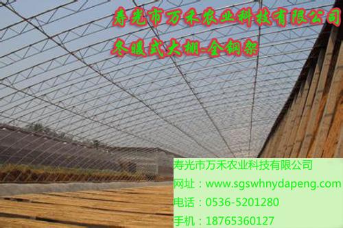 冬暖式大棚-钢管冬暖式大棚建设-寿光市万禾农业