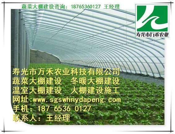 冬暖式大棚-冬暖式大棚几字钢-寿光市万禾农业