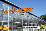 智能溫室 玻璃連棟溫室大棚 壽光市啟航溫室;