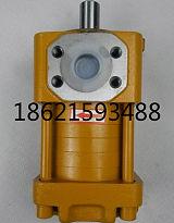 供應注塑機,船舶專用齒輪泵,NT3-G32F,G25F,G20F;