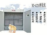 NT-4224中型孵化機孵化器;