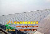 温室工程建设 有立柱日光温室 寿光市启航温室;