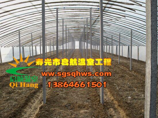 大棚建设 有立柱蔬菜拱棚 寿光市启航温室