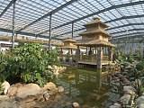 专业承揽各种钢结构农业智能温室大棚、钢结构农业观光生态园工程;