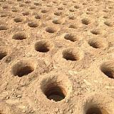 地鉆 后置式挖坑機 定做加工多型號螺旋挖坑機