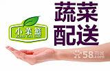 虎门镇送菜公司,虎门农产品配送公司