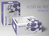 人皮质醇Elisa试剂盒