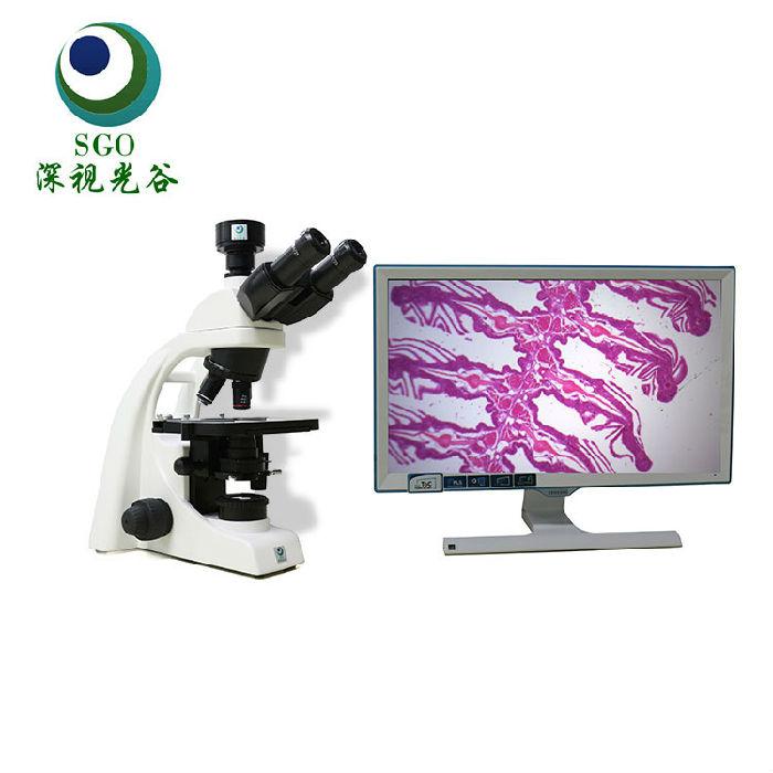 深视光谷 供应生物显微镜 1600倍放大;