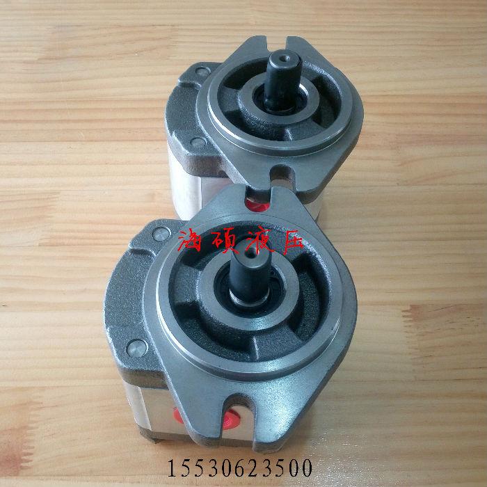 供应HONOR高压齿轮泵1GG1P06R;