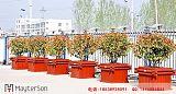 河南木塑花箱,郑州塑木花箱,河南塑木花箱供应商