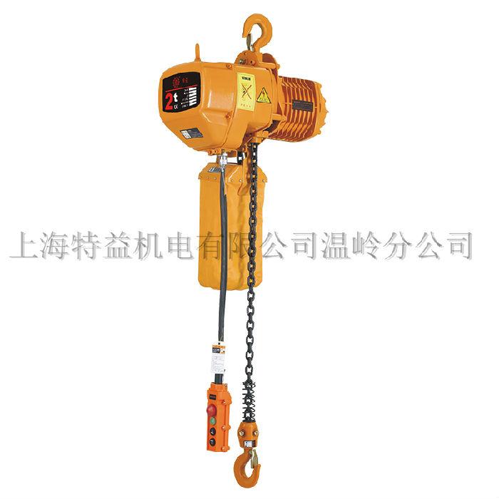 特益2-1S固定2T环链电动葫芦;