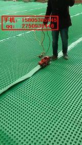 柳州地下室排水板¥停车场用绿化植草格;