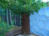 北京仿真樹定做包柱子仿真榕樹定做13661035480;