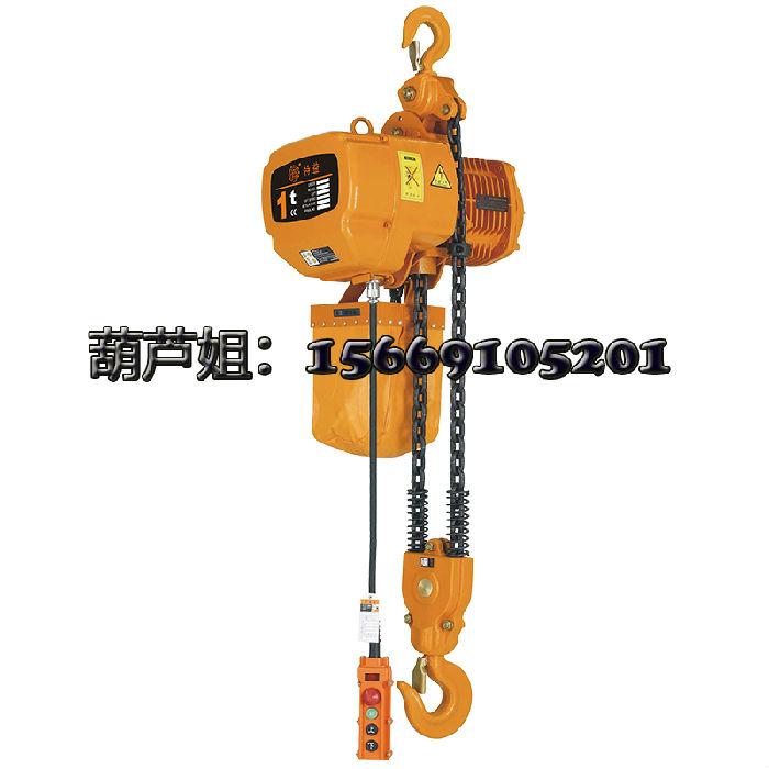 上海特益1-2D双速电动葫芦 ;