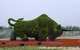 园林绿化工程案例;