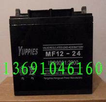 优佩斯蓄电池MF12-24蓄电池12V24Ah官方网站;