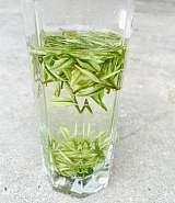 尚礼村的安吉白茶是怎么制作的呢