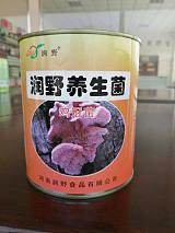 什锦菇罐头——酒店餐饮专供15890627880