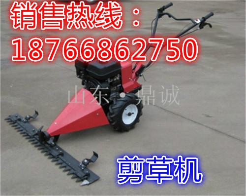 福建福州手推式可进退剪草机 自走式汽油割草机 草坪灌木杂草修剪机
