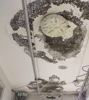 专业维修房屋漏水;