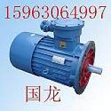 DSB17-4輸送機配件隔爆電機;