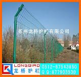 靖江葡萄园护栏网 靖江蔬菜基地护栏网 绿色铁丝网 价格实惠;