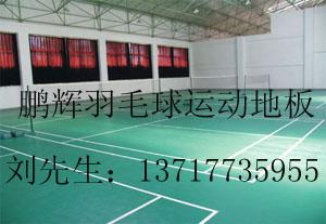 羽毛球专用塑胶地板 乒乓球塑胶地板 运动地板 室内篮球场地板;
