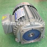 直销群策电机C01-43B0立式三相液压油泵电机0.75KW;