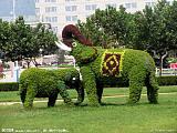 仿真大自然植物景观大型雕塑 树脂玻璃钢拉丝景观制作;