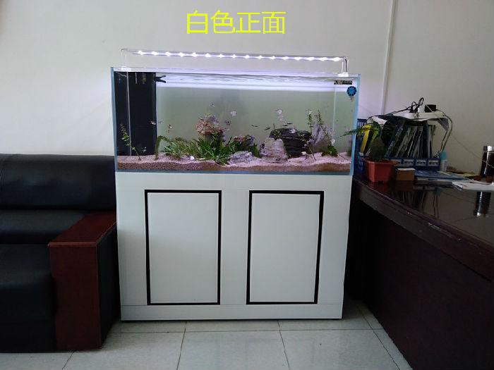 水草缸 白金刚 生态缸 免换水鱼缸