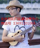 吉他 尤克里里 小提琴 二胡 大提琴 电吉他 萨克斯 长笛 黑管 小号 琵琶 ;