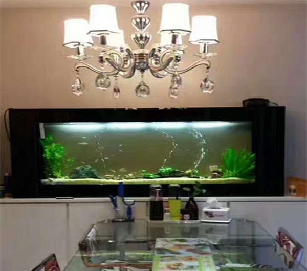 壁挂鱼缸 鱼缸厂家