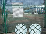 广西球场网
