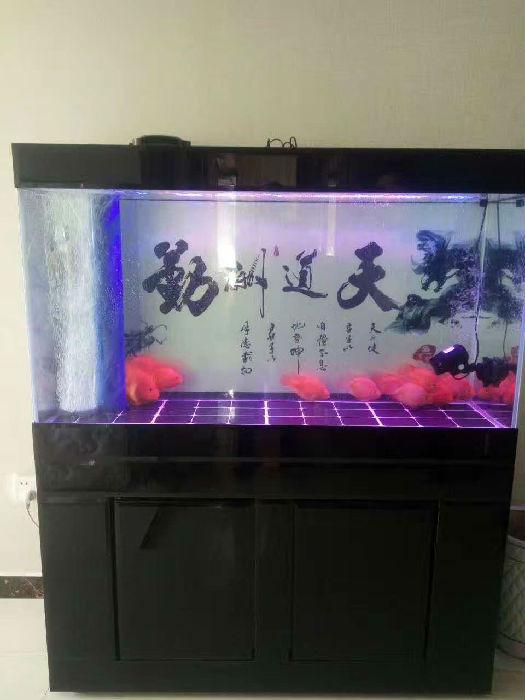 金刚玻璃鱼缸 鱼缸厂家 鑫德龙鱼缸