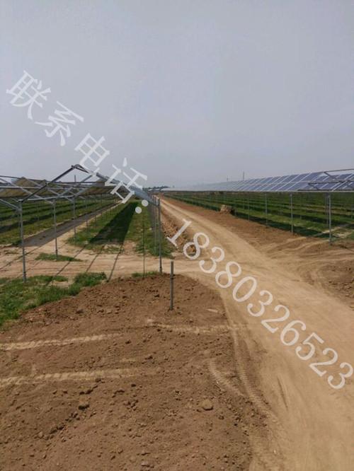 地面互补光伏epc电站投资、农光互补电站EPC总承包;